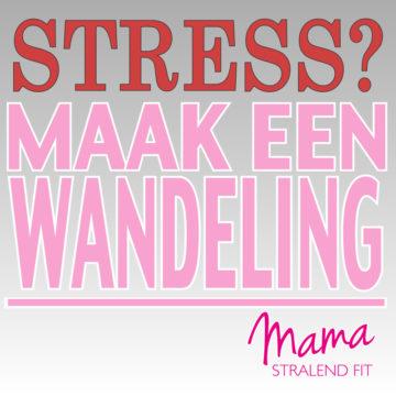 Stress? Maak een wandeling.