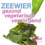 zeewier-gezond-vegetarisch-verzorgend