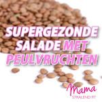 gezonde-salade-peulvruchten